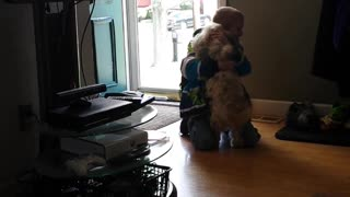 Little Boy Shares Tearful Reunion With Lost Dog
