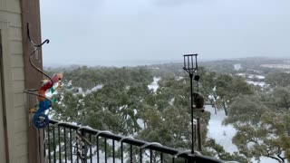 More snow in Austin