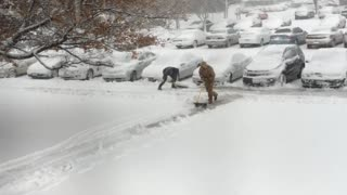 Apartment Maintenance Worker Shovels Snow onto Cars - Video