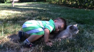 Patient cat endures toddler's affection - Video