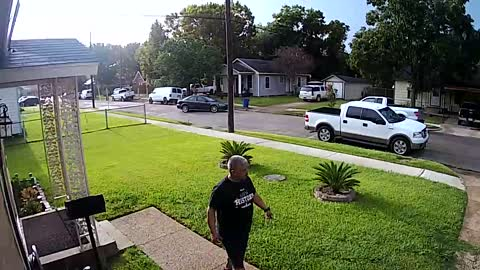 Man Leaps Into Truck Bed to Avoid Dogs