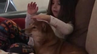Little girl loves her Shiba Inu very much