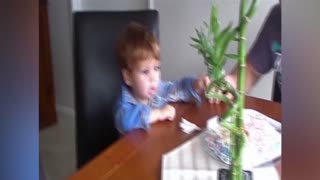 Baby Boy Makes Funny Faces Blowing Out A Candle - Video