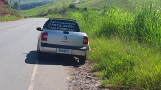 Car Abandoning Dog on Road - Video
