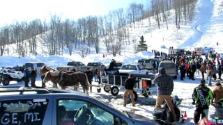 Horse Drawn Wagon Nearly Flips Over Turning In Tight Spot!  - Video