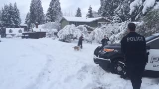 A savage snowball ambush captured on video! - Video