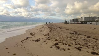 calming waves South Beach florida