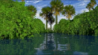 Nature - 3D animation - Video