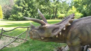 Live-action dinosaurs resemble real life Jurassic Park - Video
