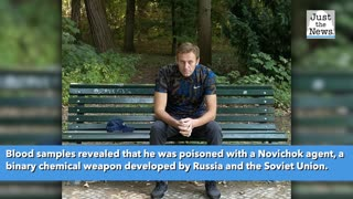 Poisoned Russian politician Navalny released from German hospital after 32 days