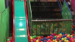 Doggy Having a Blast in the Ball Pit