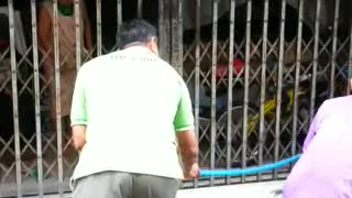 Monitor Lizard Stuck in Gate - Video