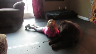 A girl and her puppy - Video