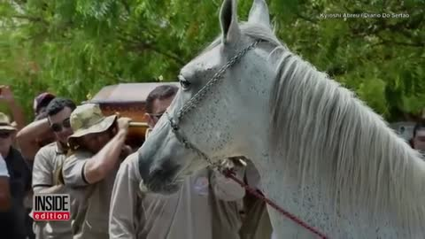 Grieving Horse Says His Last Goodbye To His Best Friend Who Died Suddenly