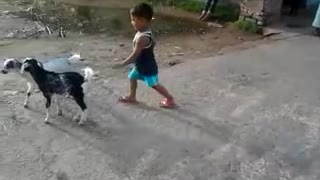 Funny Video Indian Village Children With Goat