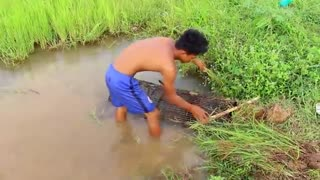 wow Amazing Fishing - Cambodia Traditional fishing - How to Catches Fish (Part 157)