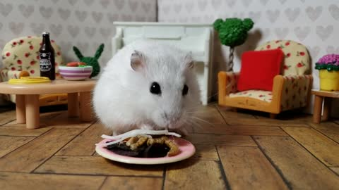 Adorable little hamster enjoys tasty salad