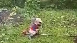 The child has mown all grass  - Video