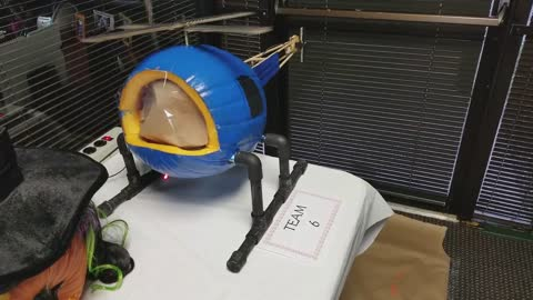 Science project turns pumpkin into mini helicopter