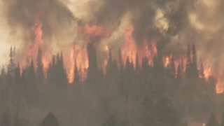 Wyoming Forest Fire