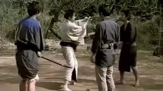 Very Very Funny Japanese Fight - Video