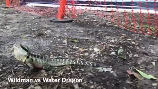 Wildman VS Water Dragon - Video