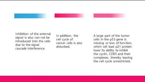 The Relationship Between Telomerase and Tumor