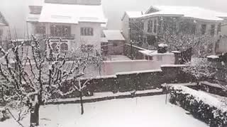 Snowfall in  Kashmir , World's Most Beautiful Place - Video