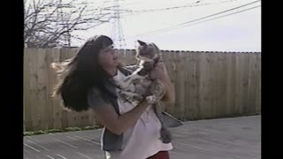 Cat Keeps Slapping Woman Who Just Wants His Love - Video