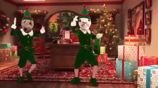 Funny Cute Animals Elf Yourself Christmas Dance  - Video