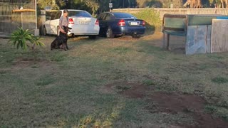 K9 Training with my Daughter
