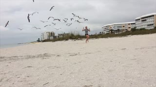 Girl Chased by Flock of Seagulls - Video