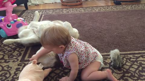 Patient dog allows baby to examine teeth