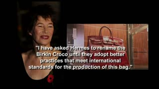 Birkin's special request to Hermes - Video