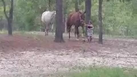 Little cowgirl with her horses