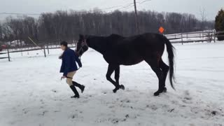 Hangin' with My Horse! - Video