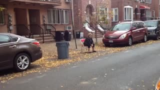 This is how people save their parking spot in Brooklyn - Video