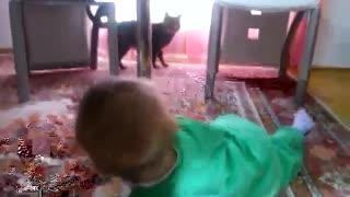Little baby and Cat - Video