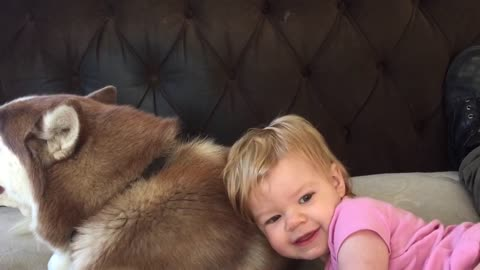 One-year-old baby girl just loves her dog