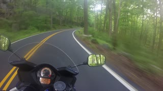 Close Call with a Deer While Riding