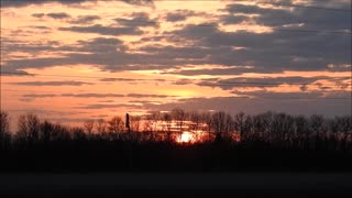 Treeline Sunset  - Video