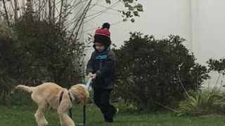 Adorably Toddler Hilariously Struggles To Walk Dog On Leash