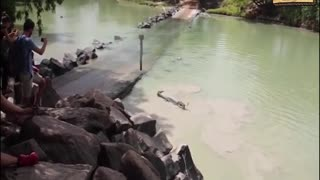 The epic battle between a crocodile and a fisherman on a river in Australia - Video