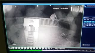 Druggie Steals Slide From Child's Backyard - Video