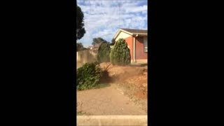 Using a truck to remove a tree! - Video