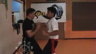 The Power of the Martial Arts - Kung Fu Self-Defense with the Master Gomes Neto in Nitro