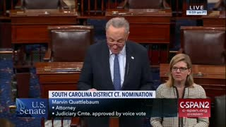 Chuck Schumer voted against Trump's judicial nominee because he is white - Video