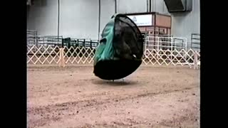Dog Stuck In Tent Runs Around Dirt Arena - Video