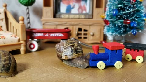Cute Snail Loves His Toy Train From Santa | cute animal video