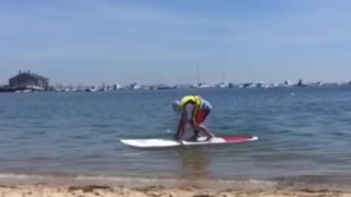 Guy yellow life vest paddleboard falls face first water - Video